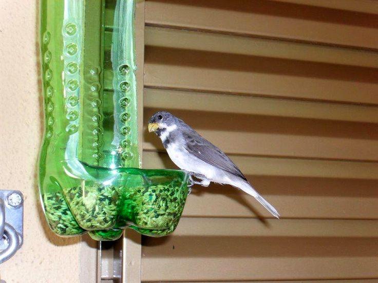 Кормушки для птиц из пластика своими руками фото оригинальные идеи