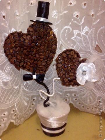 Кофейные деревья на свадьбу своими руками