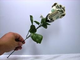 Букет из денег своими руками фото