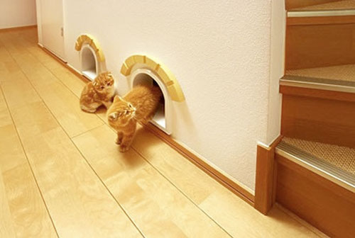 Дверка для кошек своими руками