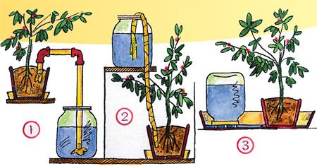 Система капельного полива для цветов своими руками